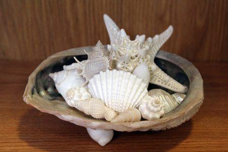 Oyster Shell Centerpiece
