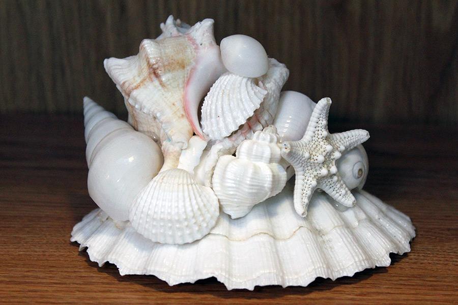 Beach Decor: Beach Wedding Centerpiece, Table Centerpiece, Nautical Decor Centerpiece, Beach Decor Centerpiece, Shell Centerpiece