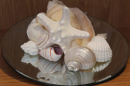 Shell Mirror Centerpiece