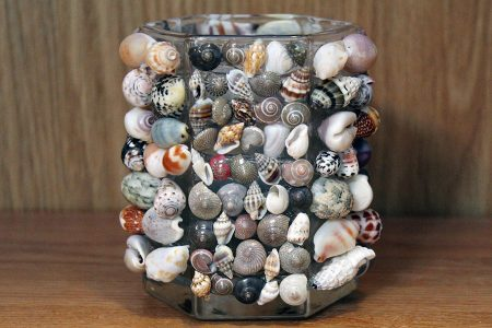 Shell Votive Candle