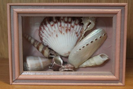 Beach Decor: Shadow Box, Beach Shadow Box, Shell Display Box, Beach Decor, Coastal Decor, Nautical Decor