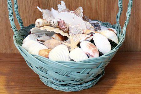 Ocean Treasure Basket